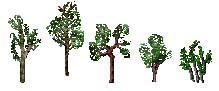 http://www.uo-pixel.de/grafiken/eri_setzlinge.jpg