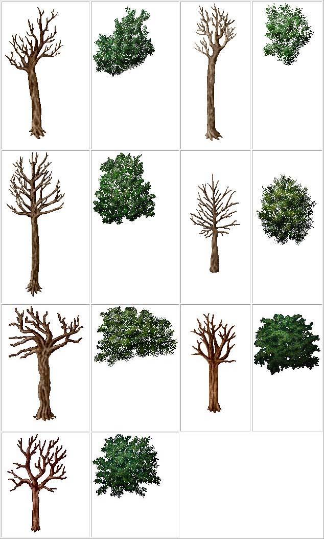 http://www.uo-pixel.de/grafiken/tiger_baeume.jpg
