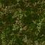 http://www.uo-pixel.de/map/chatnoir_laubwald.jpg