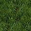 http://www.uo-pixel.de/map/e_gras.jpg
