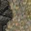 http://www.uo-pixel.de/map/e_rock2cave.jpg