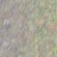 http://www.uo-pixel.de/map/e_sdreck2e_swald.jpg