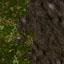 http://www.uo-pixel.de/map/eri_laubwald2dirt.jpg