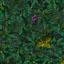 http://www.uo-pixel.de/map/eri_laubwaldb.jpg