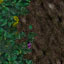http://www.uo-pixel.de/map/eri_laubwaldb2dreck.jpg