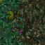 http://www.uo-pixel.de/map/eri_laubwaldb2nadelwald.jpg