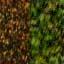 http://www.uo-pixel.de/map/me_waldboden_wald2D.jpg